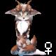 Pet 10929123