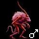 Pet 10935374