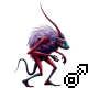 Pet 11003598