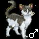 Pet 2100715