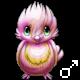 Pet 4580531